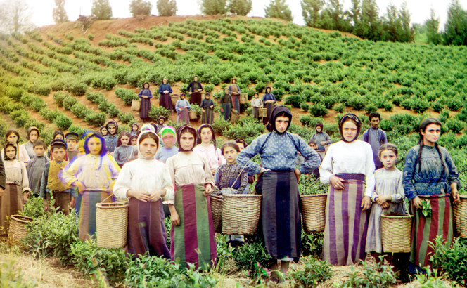 Figure 2.1. Group of [women] workers harvesting tea, Chakva, Russia, ca. 1907–1915. [Digitally-superimposed red-green-blue glass plates. Sergei Mikhailovich Prokudin-Gorskii, Library of Congress: LC-DIG-PPMSC-04430].