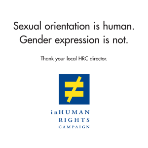 Leaflet: the inHuman Rights Campaign