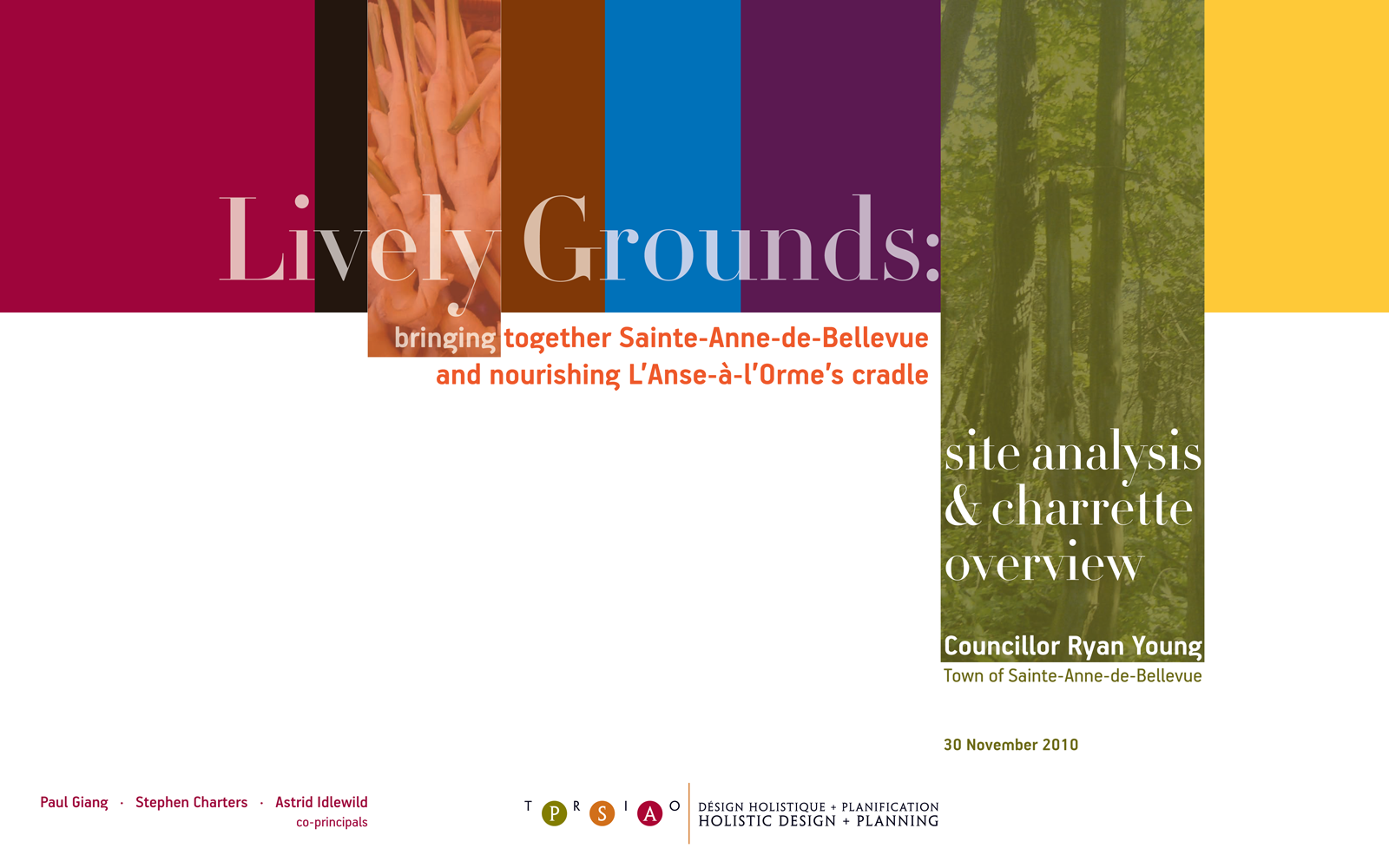 2010.11.30 Lively Grounds cover