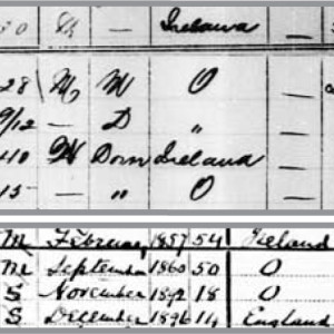 Figure 4. Census of Canada, 1891, 1911. The Wellington Wallace (Jr.) household entries. Note: presence of domestics.
