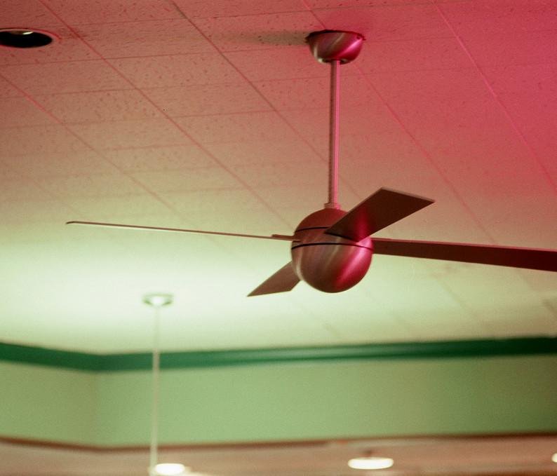 Fran's Ceiling Fan
