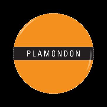 PLAMONDON button